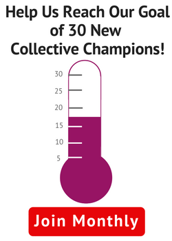 Help Us Reach Our Goal of 30 New Collective Champions! Join Monthly.